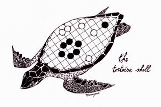 mu-the-tortoise-shell-bewerkt-2-klein
